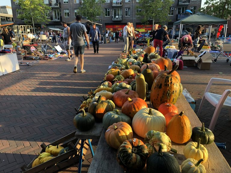 Vlooienmarkt in het centrum van Hardenberg