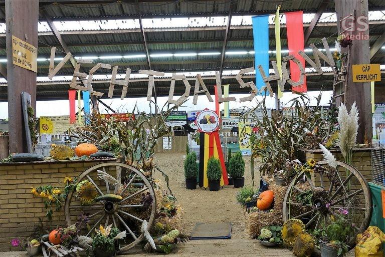 Stichting Kleindieren Tentoonstelling Vechtdal houdt tentoonstelling